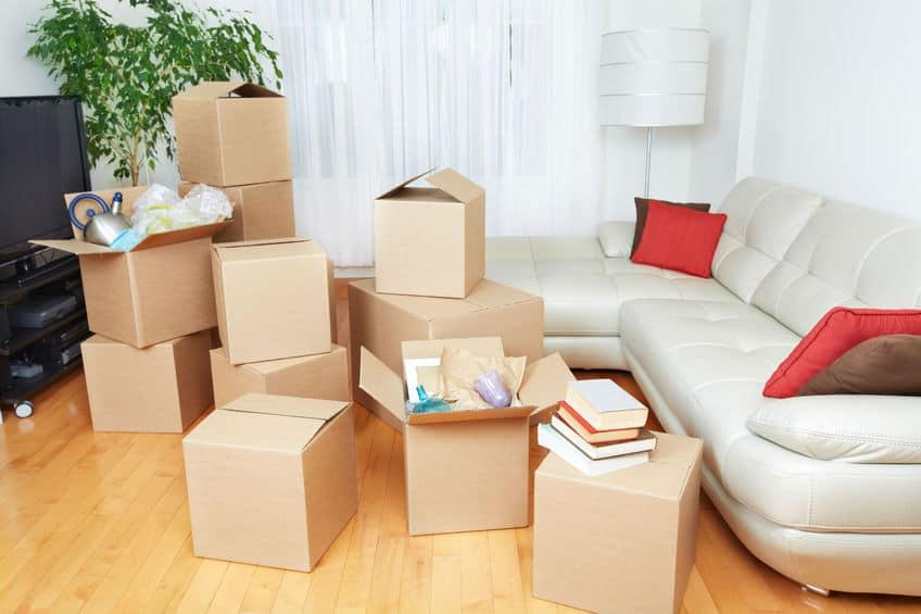אחסון למשפצי דירות